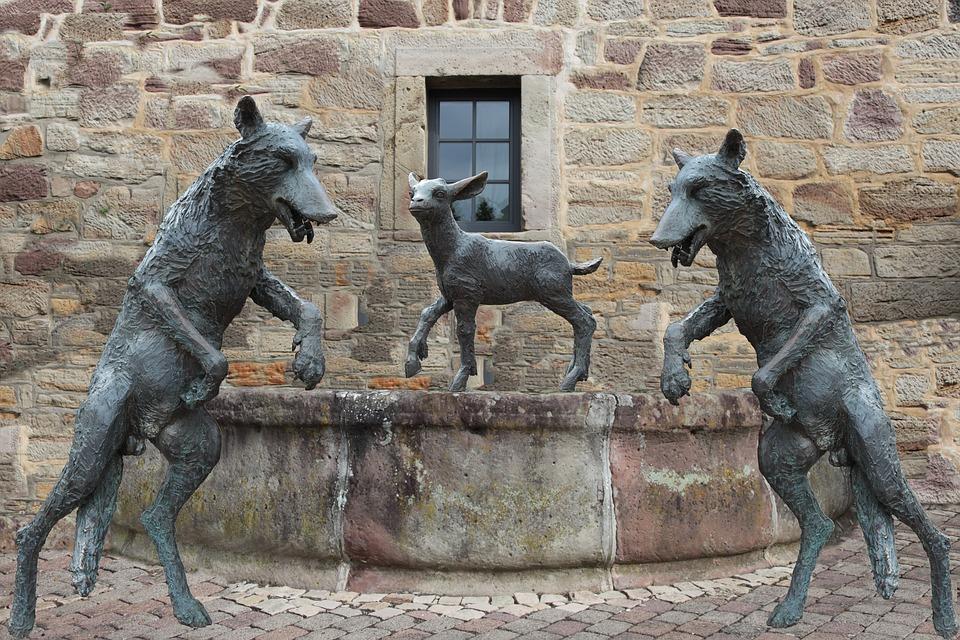 Oggi mancano pastori che affrontino fatiche, calunnie e lupi rapaci
